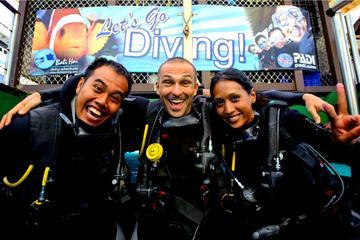 レンボンガン島での初心者ダイビング体験
