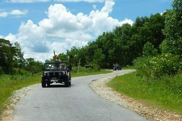 My Son Explorer Sunrise Tour from Hoi An by War Era Military Jeep