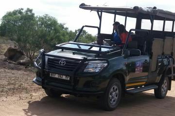 Safari au parc national Kruger d'une...