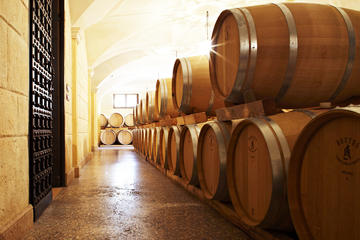 Amarone Private Wine Tour in the Cellars of a Roman Villa with Lunch