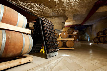 Amarone Wine Tasting and Winery Visit with local expert