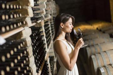 Half-Day Barolo Wine Tour in Piemonte with Gourmet Lunch and a Personal Driver