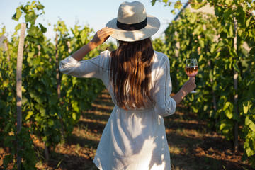 Half-Day Rose Private Wine Tour With Gourmet Lunch in French Riviera