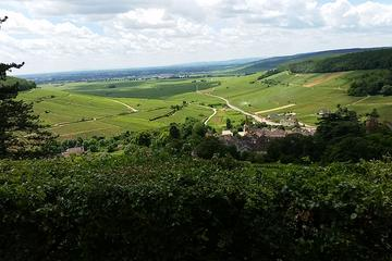 Private Tour: Burgundy Wines Full Day Tour from Beaune