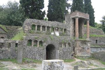 Excursão terrestre por Nápoles: viagem de meio dia até Pompeia saindo...