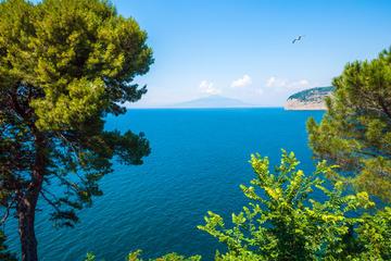 Excursión por la costa de Nápoles: visita de un día a Pompeya y...