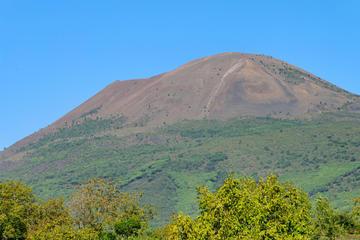 Excursion d'une demi-journée au mont Vésuve, au départ de Naples