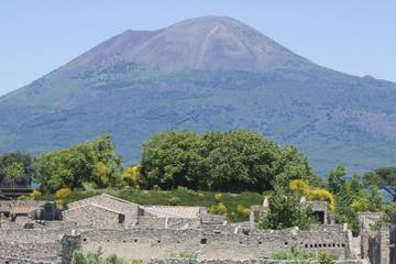 Excursion d'une demi-journée à Naples et Pompéi au départ de Sorrente