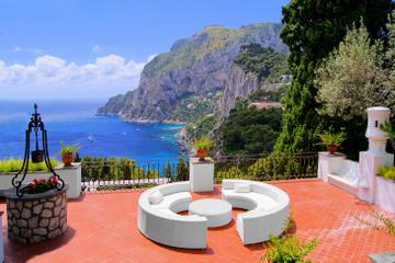 Heldagstur fra Napoli til Capri med frokost inkluderet