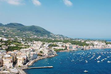 Salerno Shore Excursion: Private Naples Day Trip