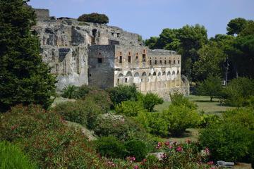 Tour privato: gita di un mezza giornata a Pompei da Napoli