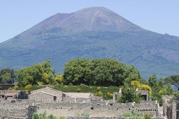 Tour turistico di mezza giornata nella città di Napoli e a Pompei da