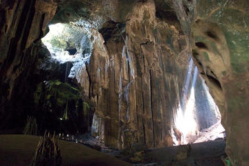 Private Tour: Full Day Gomantong Cave and Kinabatangan River Cruise Day Tour From Sandakan Including Lunch