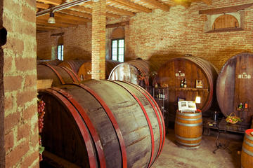 Wine Tour and Tasting at Le Marche's...