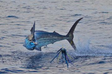 Papagayo Gulf Fishing Trip