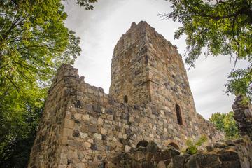 Excursão Terrestre em Estocolmo: Excursão História dos Vikings de...