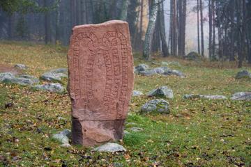 Vikingahistorisk dagstur från Stockholm inklusive Uppsala