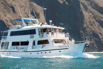 4- 5- or 8-Day Fragata Cruise