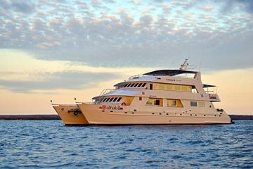 Last-Minute Discounted Galapagos  4-, 5, 7, or 8-day Cruise