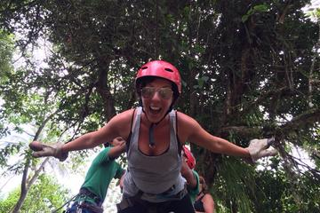 Mindo Zip Lining, Butterfly Farm and Hummingbirds