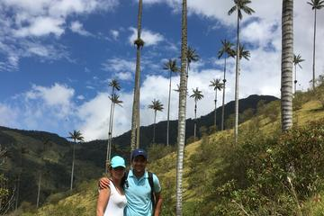 Recorrido de 12 días de lo mejor de Colombia: Bogotá, Medellín...