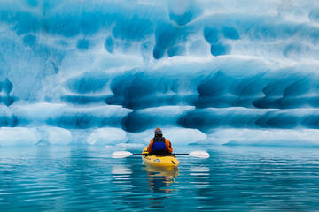 Full-Day Bear Glacier Kayaking...