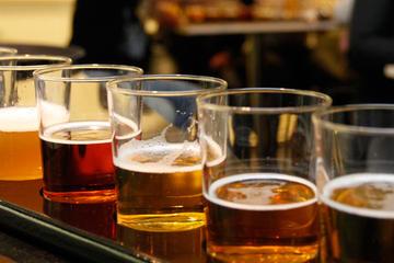 Bierproeverij op Olgerdinbrouwerij vanuit Reykjavik