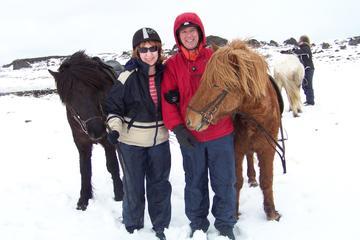 Rundtur från Reykjavik med ridning på vikingahästar och besök i Blå ...