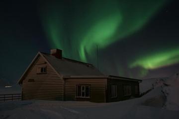 Tour notturno dell'aurora boreale con
