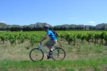 Private Guided Bike Tour Around Saint Rémy