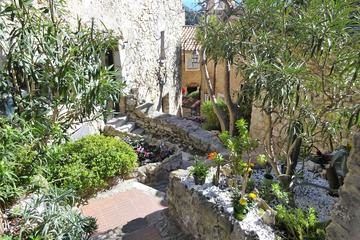 Villefranche Shore Excursion: Private Tour of Eze, Monaco and the Riviera corniches
