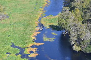 Recorrido en helicóptero por la fauna y flora de Busch Gardens y el...