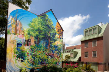 Two-Hour Mural Mile Philadelphia Walking Tour