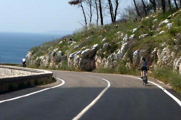 Otranto and the Coast Full-day Bike...