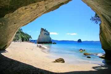 Full-Day Coromandel Tour from Auckland
