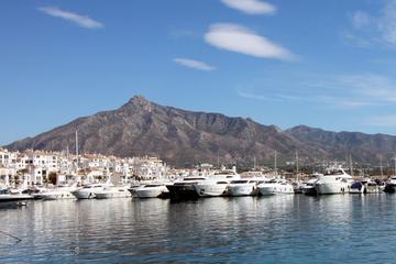 Excursión por la costa: Marbella y Puerto Banús