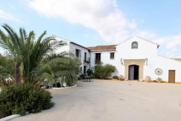 Malaga Shore Excursion: Private Olive...