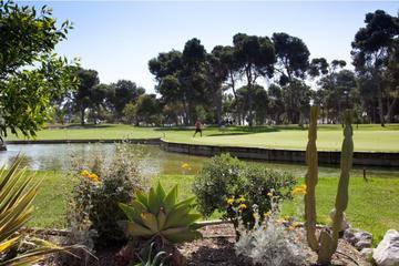 Shore Excursion: Golf Day in Malaga