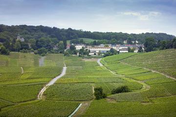 Champagne Region Private Day Trip
