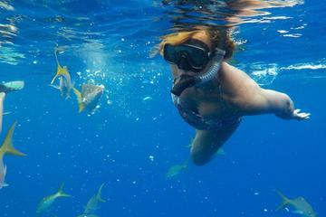 Turks and Caicos Shore Excursion...