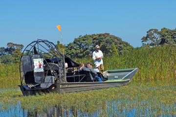 Day Trip One Hour Airboat Tour near Saint Cloud, Florida