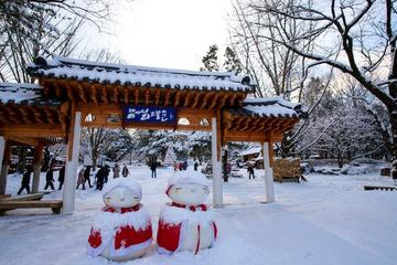 Day Trip to Nami Island and Gangchon Elysian Ski Resort from Seoul