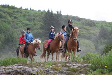 Excursion d'équitation en Islande au...