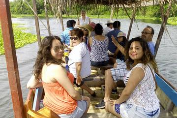 Private Tour: Coyuca Jungle, Turtle...