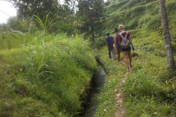 Countryside Trekking