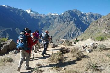 2-Day Colca Canyon Trek