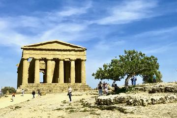 Private Tour from Palermo to Agrigento with Local Guide