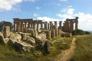 Private Wine Tour and Archeological Area of Selinunte with licensed...
