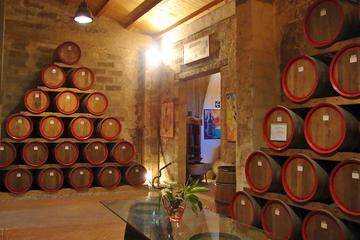 Private Wine Tour and Archeological...