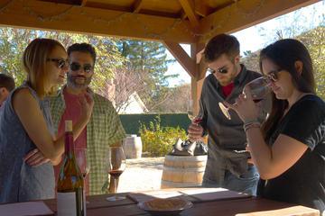 Book Ultimate Wine Experience in San Luis Obispo on Viator